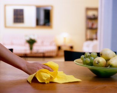 residential cleaning business