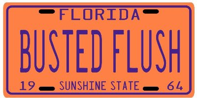 John D  MacDonald Travis Mcgee BUSTED FLUSH 1964 FL License plate